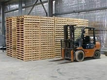 wooden pallets australia
